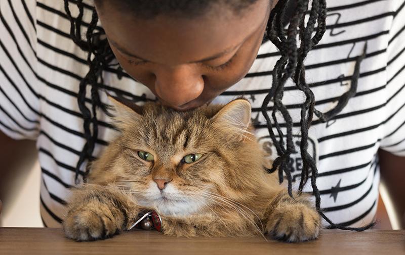 woman kissing cat on head